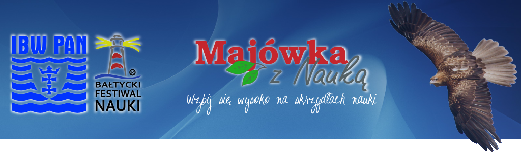 majowka Project